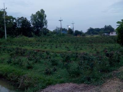 ที่ดิน 1390000 สิงห์บุรี ค่ายบางระจัน บางระจัน